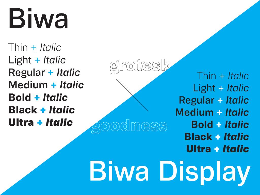 Biwa_headliner