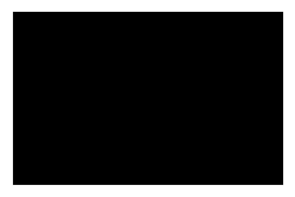 onitsuka